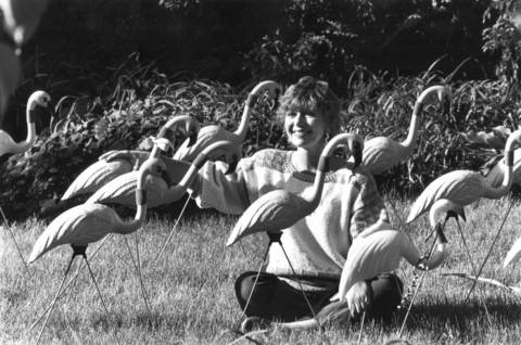 "Melinda Andrews, of the 700 block of Willow Road in Winnetka, sits surrounded by her flock of plastic flamingos in 1990, a bright pink protest against a plan for luxury apartments in a neighborhood the builder called ""tacky."""