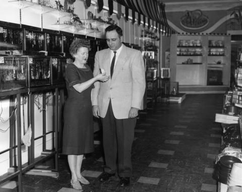 Oct. 13, 1961: Corinne Owen, vice president of The Lambs, Inc., shows a parakeet to Robert Terese, president, in the new pet store they're about to open on State Street.
