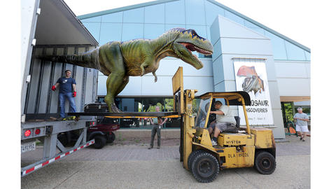 Using a forklift, Corey Whiting gives the dinosaur a lift down; installation is starting for Dinosaur Discoveries at the Virginia Living Museum.