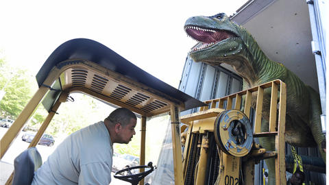 Corey Whiting takes great care to unload the unusual cargo being delivered to the Virginia Living Museum; Dinosaur Discoveries will be starting May 7.