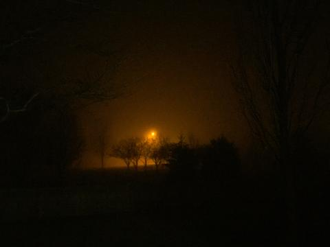 Dense fog in Plainfield. Rolled in heavily around 5:30 tonight. Appears dark amber as reflected by the sodium lights.
