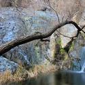 Lower Darwin Falls