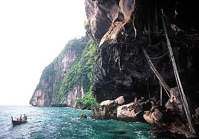Reached by boat from Phuket, Viking Cave on the island of Phi Phi Le draws tourists who come to see birds' nests.