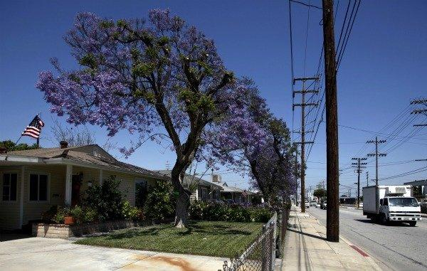 The city of Vernon owns nearly all of the residential property within its borders, charging monthly rents that average about $260, far less than what it costs for residents to live in Los Angeles public housing projects such as Jordan Downs and Nickerson Gardens. Above, Vernon Councilman Bill Davis' home.