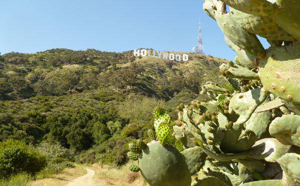 Beachwood Canyon, Hollywood sign