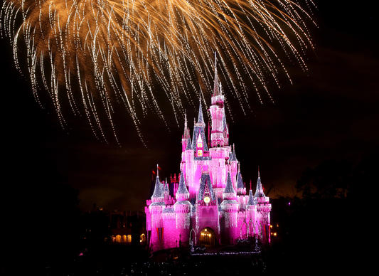 More than 200,000 twinkling 'Dream Lights'  illuminate Cinderella Castle, at Walt Disney World's Magic Kingdom, during the 'Wishes' fireworks show, Wednesday night,  Nov. 16, 2011. The holiday-themed visual spectacle at the castle continues through Jan. 8.