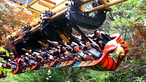 Everland officials have announced plans to replace Eagle Fortress at the South Korean park with a new roller coaster in 2012. The Arrow suspended terrain coaster, which hasn't operated since 2009, is similar to Ninja at California's Six Flags Magic Mountain and Iron Dragon at Ohio's Cedar Point.