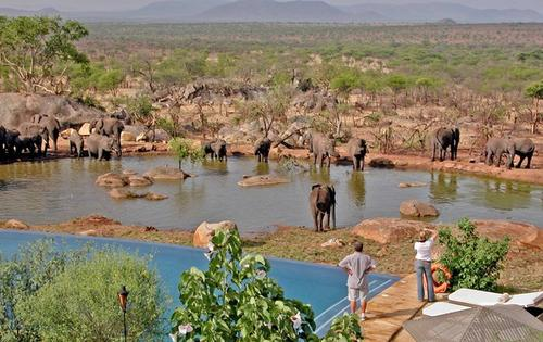 Elephants take their ease at a watering hole at Bilila Lodge Kempinski, making it easy for guests to get a close-up view of  some of the wildlife of  Tanzania's Serengeti National Park.