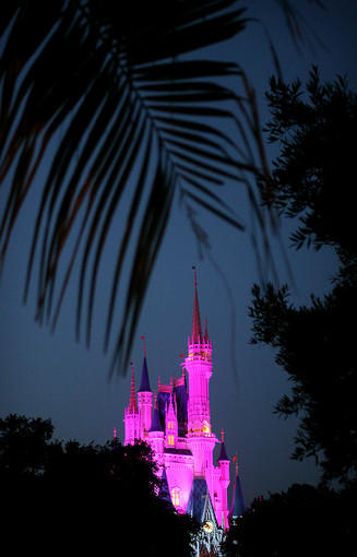 Cinderella's Castle is illuminated at the Magic Kingdom on June 12, 2010.