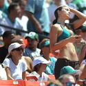 miami dolphins, new york jets, football, nfl