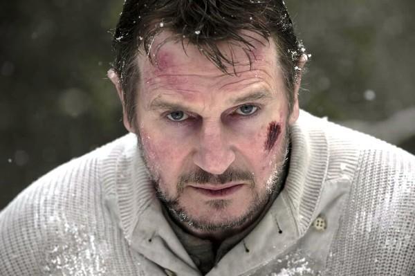 "Liam Neeson stars in ""The Grey."""