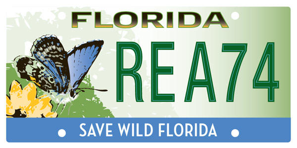 "<b>Save Wild <a class=""taxInlineTagLink"" id=""PLGEO100100400000000"" title=""Florida"" href=""/topic/us/florida-PLGEO100100400000000.topic"">Florida</a>:</b>  <br> Effective Oct. 1, 2010.<br> <br> <li> Total plates issued in 2012: 1,992 <li> Organizations receiving proceeds: Florida Biodiversity Foundation, Inc."