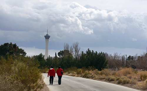 """Forsake the fake pyramid and fake Statue of Liberty for a power walk through the real Vegas: 110 acres of pre-Bugsy Siegel desert. There are miles of cactus-filled trails, botanic gardens and a museum that pays tribute to the city's Mojave Desert roots. Open daily 10 a.m.-6 p.m. daily. $18.95 for adults, $10.95 for kids 5-17. 333 S. Valley View Blvd.; (702) 822-7700, <a href="""""""">http://www.springspreserve.org.</a>"""