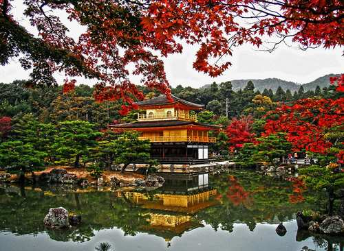 The Golden Pavilion  temple and its grounds are stunning in Kyoto, Japan. Buddhist temple gardens are among the many admirable things that make Japan a singular destination.