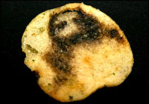 Jesus in potato chip