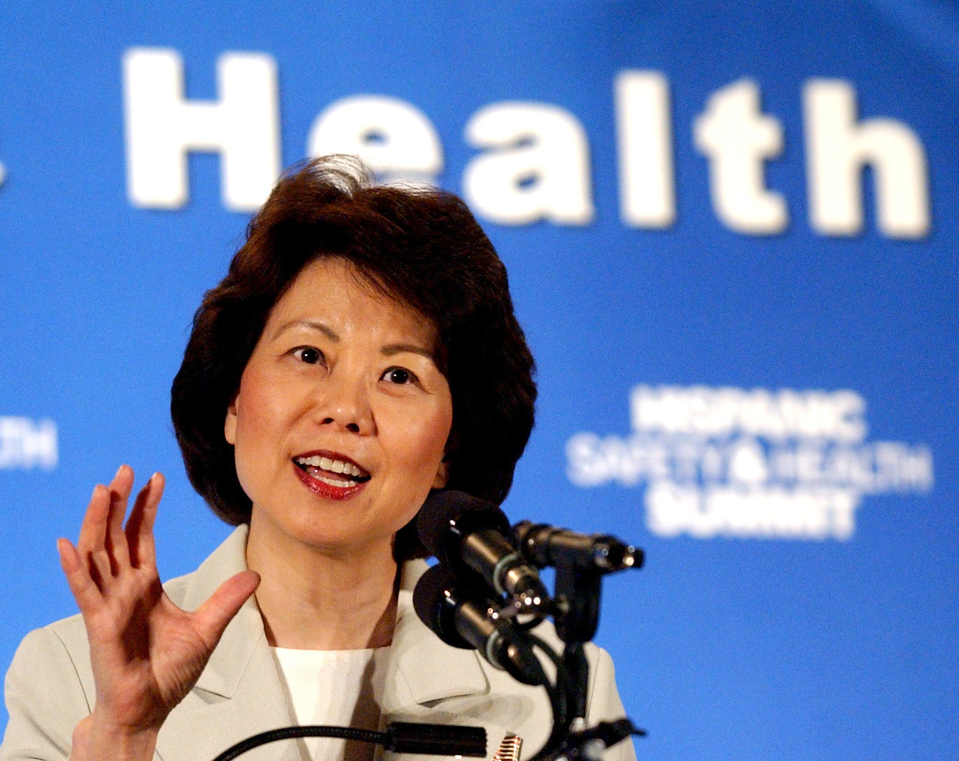 Pictures: Cruise ship godmothers - Former U.S. Labor Secretary Elaine Chao