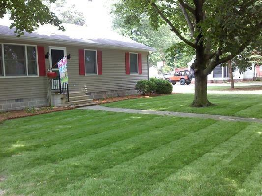 AFTER. This is what an ugly lawn looks like after it's seeded with Pennington.