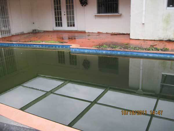 City officials cited HSBC Bank for the pool's filthy condition at 2341 Sabal Palm Drive in Miramar.
