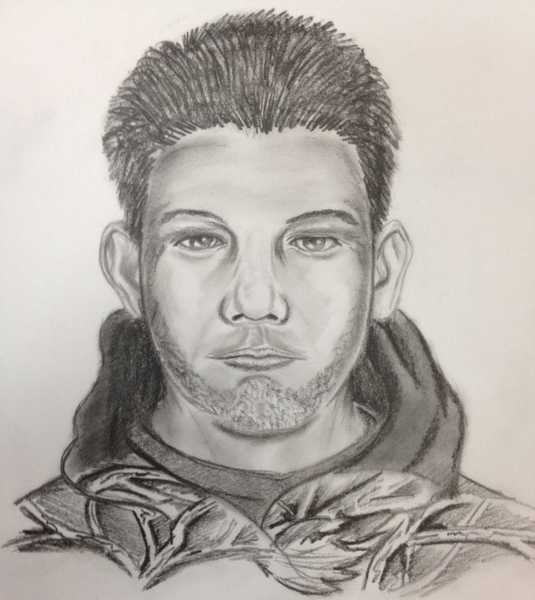 Composite sketch of a man wanted in a spate of burglaries in Baltimore County.