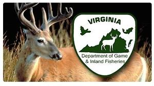 Deer, turkey, bear hunting numbers released by Virginia Department of Game and Inland Fisheries