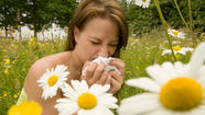 Allergy season is upon us and in New Orleans you've probably noticed.  A new report by the Asthma and Allergy Foundation of America ranks The Big Easy as being the 14th worst city in the nation for allergies.
