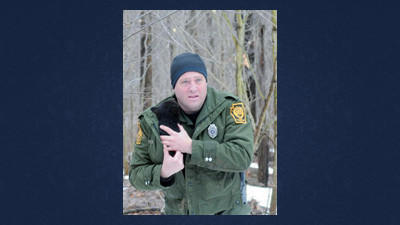 Brian Witherite, a wildlife conservation officer with the state Game Commission, carries a bear cub away from its den to be weighed and ear-tagged in this March of 2010 photo.