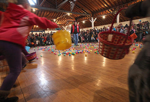 Tom Wanttie, of the Aberdeen Optimist Club, stands in the center of the floor and shouts go as five and six-year-old children start after plastic eggs scattered on the floor of the Wylie Park Pavillion Saturday at the annual Easter Egg Scramble. Wet conditions moved the event indoors but a large crowd turned out to gather eggs in five age categories. photo by john davis taken 4/23/2011