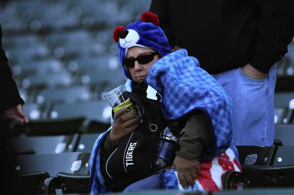 A cold watches the Chicago Cubs lose to the Washington Nationals in the Cubs home opener at Wrigley Field.