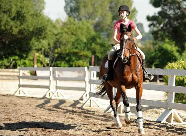"Eighth grader Cami Roberts of Westridge School in Pasadena rides ""Harley"" as she prepares for the 90th annual Children's Horse Show, sponsored by the Flintridge La Canada Guild of Huntington Memorial Hospital at the Flintridge Riding Club in La Canada."