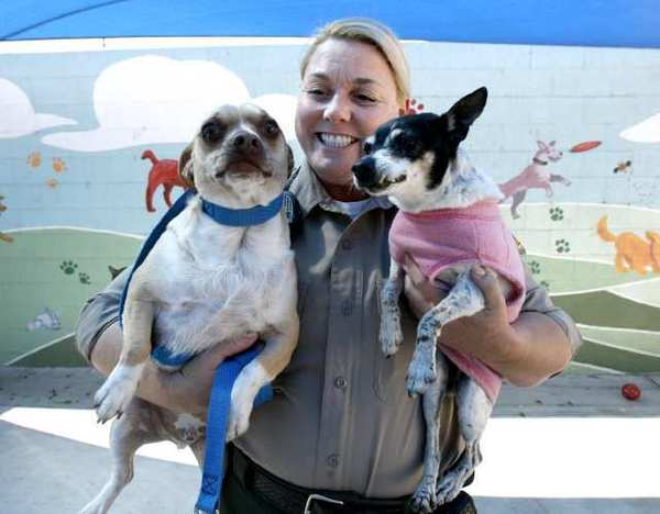 Burbank Police Dept. Senior Animal Control Officer Stacey Wood with Molly and Pica, who were returned three days after being adopted, at the Burbank Animal Shelter.