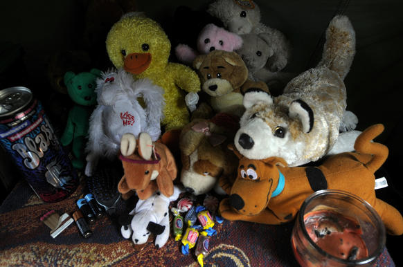 A resident of the property allowed photos of her tent, which had a collection of stuffed animals on display.