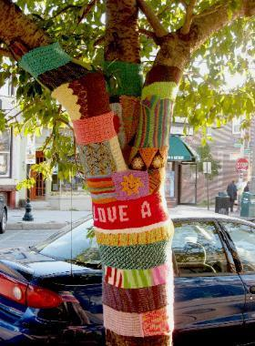 One of the more colorful yarn bombs along the Avenue
