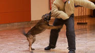Photo Gallery: APD K-9 Unit, Dollars for Dogs Open House