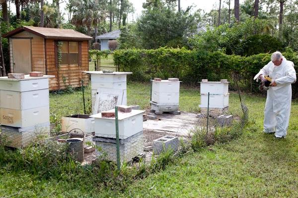Broward Beekeepers Association President, Dr. Leo Gosser, learned beekeeping from his father and now has an apiary on his property in Parkland. The Broward Beekeepers Association offers educational courses on beekeeping at monthly meetings on the second Sunday of the month at 4 p.m. at the Sawgrass Nature Center located in Coral Springs. For more information, visit www.BrowardBees.org.