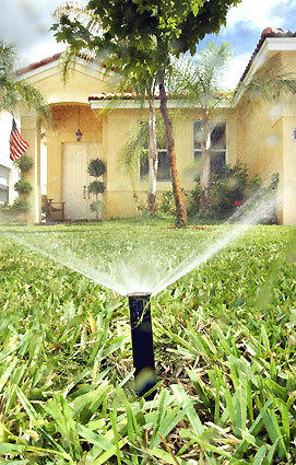 "Florida has declared April ""Water Conservation Month,"" urging residents to reduce water use at the peak of the winter-to-spring dry season."