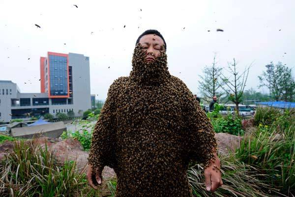 Beekeeper She Ping is covered with bees during a challenge to break the world record.