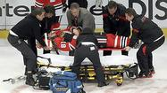 <strong>Raffi Torres got a 25-game suspension for his dirty, despicable,</strong> flying hit that knocked out Marian Hossa in the first period of Game 3 of the Blackhawks-Coyotes playoff series.
