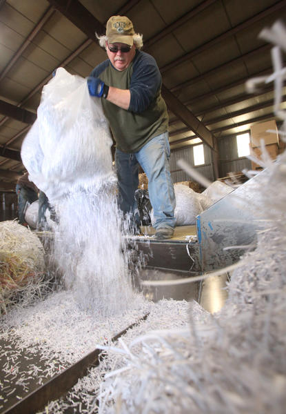 Tim Schock empties a bag of shredded paper onto a conveyor headed for a baler at Dependable Sanitation.