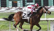 Champion horse Havre de Grace retired with injury