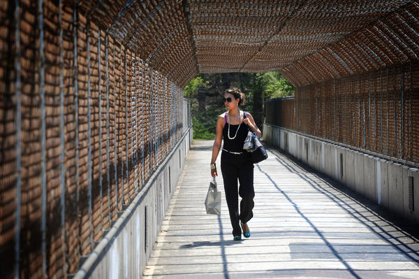 Jamie McLean, 39, of Oakland Mills, walks over the U.S. 29 bridge on the path that winds around Lake Kittamaqundi on her way to work. Fred Gottemoeller (not pictured) is a member of Bridge Columbia, a group that advocates for a wider bridge connection.