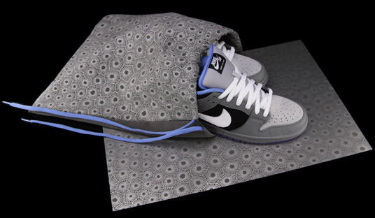 "Nike and Grand Rapid-based store Premier will debut the ""Petoskey Stone Dunk"" shoe Saturday, paying tribute to the Great Lakes and the popular Northern Michigan fossil."