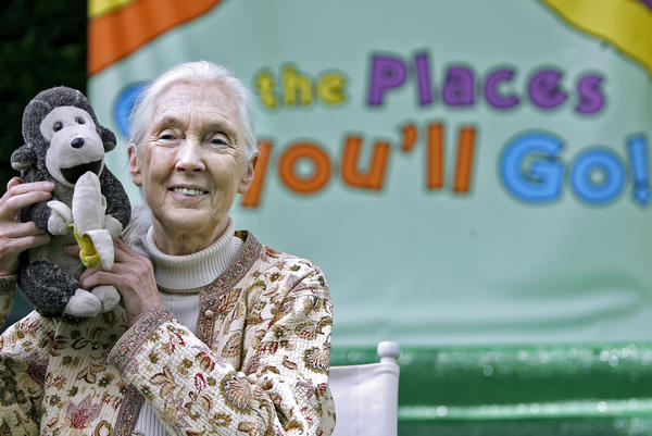 United Nations Messenger of Peace Dr. Jane Goodall will serve as the Grand Marshal of the 2013 Tournament of Roses festivities, announced at the Tournament House in Pasadena on Wednesday, April 25, 2012.