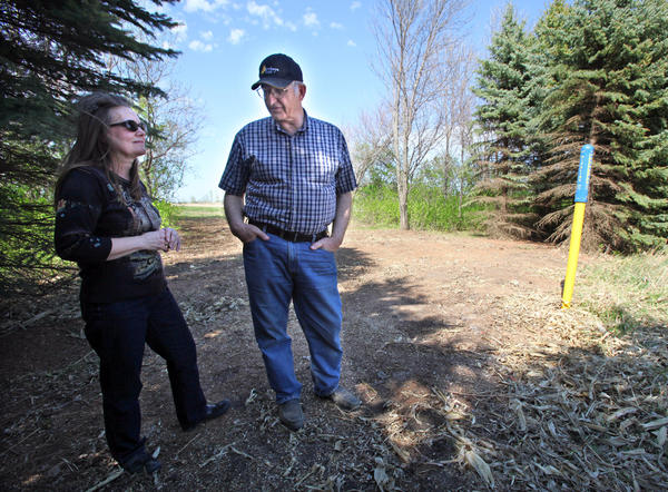Pam and Glen Larson stand where trees stood earlier this month before crews from NuStar clear-cut an area above their pipeline on the Larsons' land. The marker at right is used by NuStar to track the pipeline from the air. American News Photo by John Davis