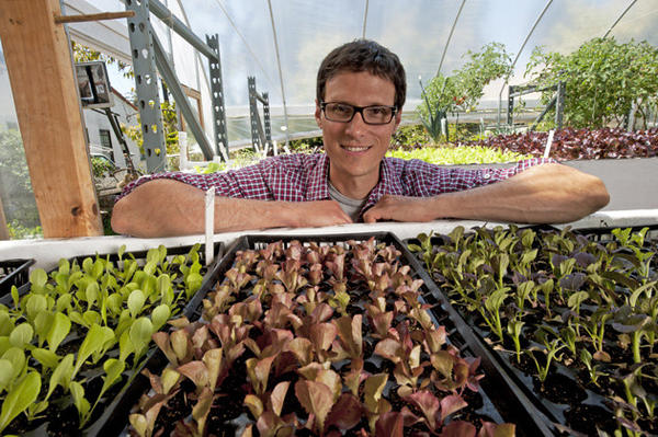 David Rosenstein of Evo Farm in Mar Vista with young lettuce seedlings ready for transplant.