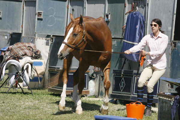 Melissa Bulick, right, takes Versace out of the barn before showering Versace during Flintridge La Cañada Guild's annual horse show on Saturday, April 28, 2012.