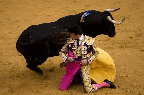 "Spanish matador David Fandila ""El Fandi"" performs a pass to a bull during a bullfight at the Maestranza Bullring in Sevilla, on April 28, 2012.  AFP PHOTO/ JORGE GUERRERO"
