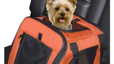 Products for on-the-go pets