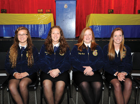 FFA committee officers