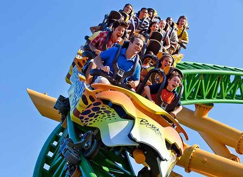 The new roller coaster and animal attraction at Busch Gardens, Cheetah Hunt and Cheetah Run, open to parkgoers in late May 2011.