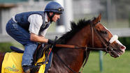 Bodemeister Early Favorite For Kentucky Derby